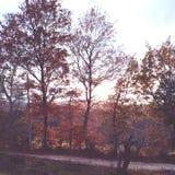 Giorno di autunno Fotografia Stock Libera da Diritti