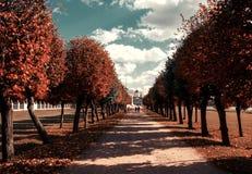 Giorno di autunno Fotografie Stock Libere da Diritti