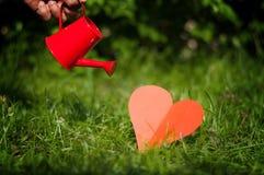 Giorno di biglietti di S. Valentino, annaffiatoio della mano con i cuori su erba Immagine Stock
