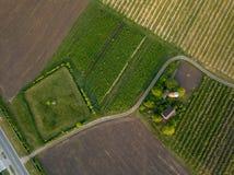Giorno di estate del campo di agricoltura di vista aerea Fotografia Stock