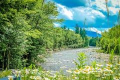 Giorno di estate nelle montagne fotografia stock