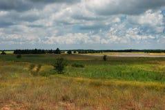 giorno di estate nuvoloso, pellicano sul lago Fotografia Stock
