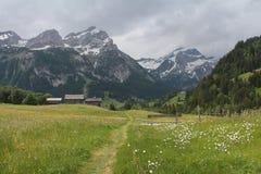 Giorno di estate piovoso nelle alpi svizzere Immagini Stock