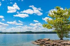 Giorno di estate sul lago Fotografie Stock Libere da Diritti