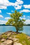 Giorno di estate sul lago Immagini Stock