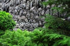 Giorno di estate in una bella foresta fresca fotografia stock libera da diritti