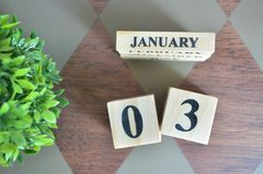 Giorno di gennaio con la foglia sul diamante fotografia stock libera da diritti