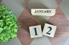 Giorno di gennaio con la foglia sul diamante fotografia stock