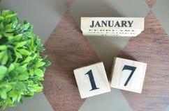 Giorno di gennaio con la foglia sul diamante immagini stock