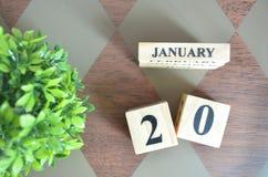 Giorno di gennaio con la foglia sul diamante immagini stock libere da diritti