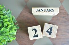 Giorno di gennaio con la foglia sul diamante fotografie stock libere da diritti