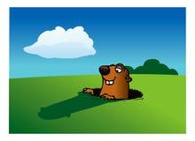 Giorno di Groundhog Fotografie Stock
