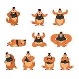 Giorno di Groundhog Marmotta nelle pose e nel moto dell'insieme del cappello woodchuck Fotografie Stock