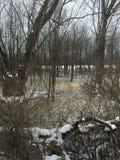Giorno di inverni Fotografia Stock Libera da Diritti