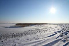 Giorno di inverno Immagine Stock Libera da Diritti