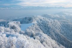 Giorno di inverno con gli alberi coperti di gelo bianco Fotografia Stock