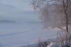 Giorno di inverno freddo stesso in campagna fotografia stock