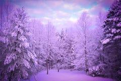 Giorno di inverno fresco in Nord Carolina Fotografia Stock Libera da Diritti