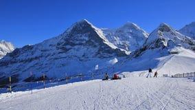 Giorno di inverno in Grindelwald, alpi svizzere Fotografia Stock Libera da Diritti