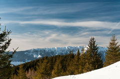 Giorno di inverno libero Immagini Stock