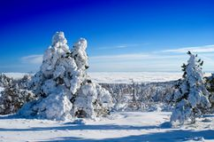 Giorno di inverno luminoso fotografia stock