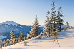 Giorno di inverno luminoso nelle montagne fotografia stock