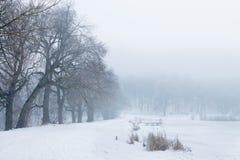 Giorno di inverno nebbioso Fotografie Stock Libere da Diritti