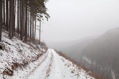 Giorno di inverno nebbioso in montagne Fotografia Stock