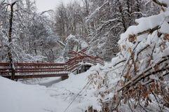 Giorno di inverno nel parco Kolomenskoye, Mosca, Russia Fotografie Stock Libere da Diritti