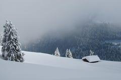 Giorno di inverno nelle alpi Immagini Stock Libere da Diritti