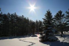 Giorno di inverno perfetto Fotografie Stock Libere da Diritti