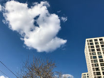 Giorno di inverno soleggiato Fotografia Stock Libera da Diritti