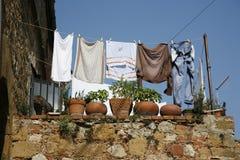 Giorno di lavaggio con il gatto fotografie stock