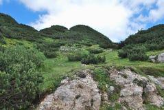 Giorno di luglio d'altezza in montagne. Fotografia Stock Libera da Diritti