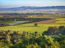 Giorno di molla della valle con molte tonalità di verde fotografie stock libere da diritti