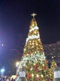Giorno di Natale Fotografia Stock