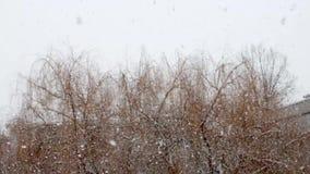 Giorno di nevicata a fuoco stock footage