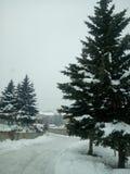 Giorno di Snowy in Armenia Tsaxkadzor Fotografia Stock Libera da Diritti