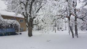 Giorno di Snowy in Mosier Oregon Immagine Stock