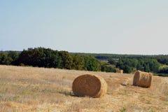 Giorno di terra Giorno pieno di sole Lato del paese Parco di Eco Balle di fieno sul campo Paesaggio rurale con i mucchi di fieno Fotografia Stock