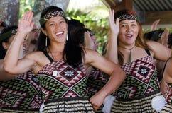 Giorno di Waitangi e festival - festa nazionale 2013 della Nuova Zelanda immagini stock libere da diritti