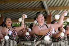 Giorno di Waitangi e festival - festa nazionale 2013 della Nuova Zelanda fotografia stock
