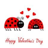 Giorno felice dei biglietti di S Scheda di amore Due coppie rosa della coccinella del fumetto con progettazione piana dei cuori Fotografia Stock