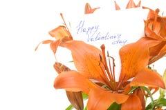 Giorno felice dei biglietti di S. Valentino Fotografie Stock