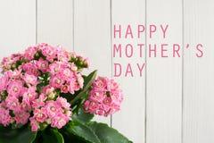 Giorno felice del `s della madre Fotografie Stock
