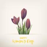 Giorno felice delle donne Immagini Stock