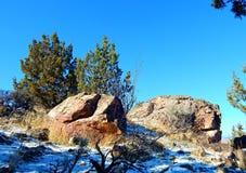 Giorno felice sull'alta collina Fotografia Stock