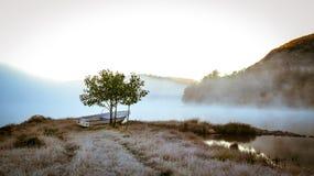 Giorno freddo nel lago immagine stock libera da diritti