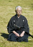 Giorno giapponese della coltura Fotografie Stock Libere da Diritti
