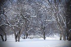 Giorno invernale di Snowy in foresta con il ponte Immagine Stock Libera da Diritti